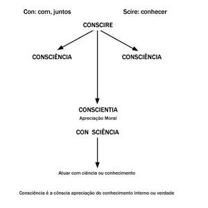 consc3